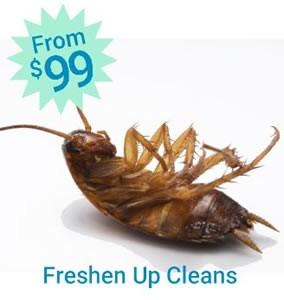 Freshen Up Cleans